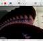 cipinlightfeedback.jpg